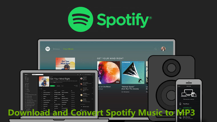 Download Spotify Music Files to MP3